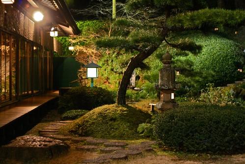 鶯啼庵の庭