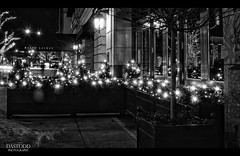 Ralph Lauren (C. Dastodd) Tags: christmas blackandwhite bw chicago illinois downtown boulevard january michiganavenue avenue ralphlauren magnificentmile magmile 2011