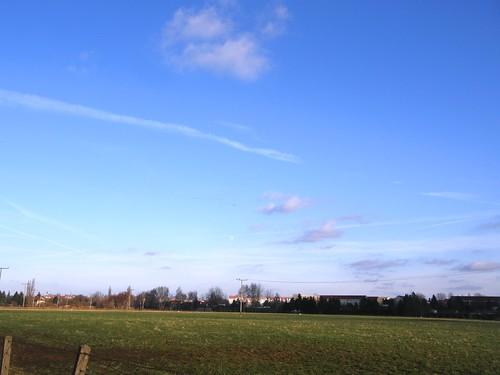 Sunny day 044
