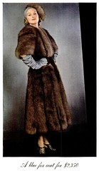 1937 Vintage Fur - Blue Fox (CharmaineZoe) Tags: