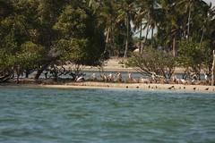 Mozambique-4437