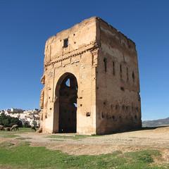 Merenid tomb