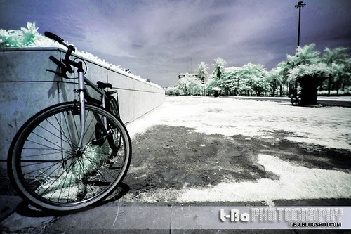 Bicycle - IR