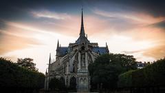 Notre Dame Paris (paradycedesign) Tags: sky city sunset street water river travel church blue night sun light clouds urban architecture cityscape bridge summer building paris france seine notre dame hôtel de ville îledefrance 2016