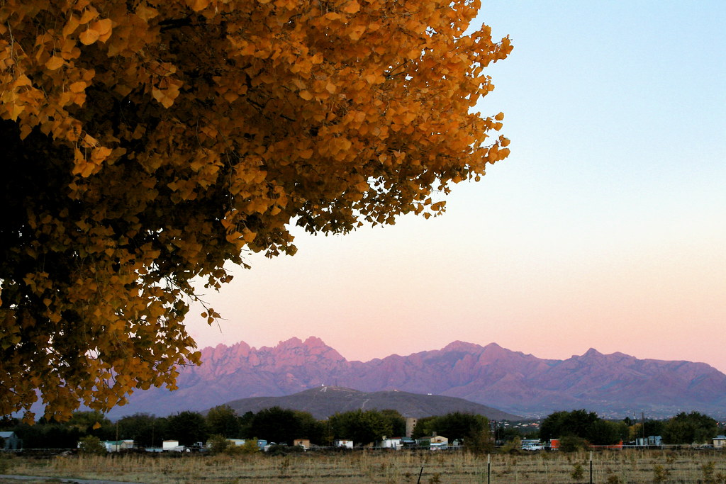 Organ Mountains in the Fall