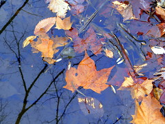 Reflected Fall Sky (kenman2010) Tags: blue autumn sky fall water reflected