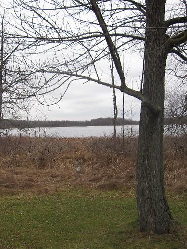 Nobody and the Lake