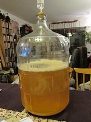 IMG_5821 (V_M_G) Tags: apple brewing cider apfelwein applewine vmgphoto