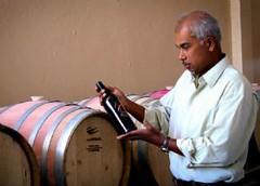 Amor francés: dejó París para hacer sus vinos en San Rafael