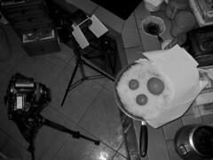"""Setup for """"Cold Fruits"""" (Alucardo) Tags: david photography photographie thomas setup thomasdavid thomasdavidphotography thomasdavidphotographie"""