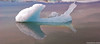 Arrow at Jokulsarlon (@PAkDocK / www.pakdock.com) Tags: trip travel blue light sunset sea summer panorama naturaleza sun lake abstract art tourism ice luz beach nature water composition landscape geotagged outdoors island photography idea mirror moving iceland islandia rainbow dock agua nikon scenery exposure mood view dynamic farm country wave paisaje running symmetry explore reflect shore midnight arrow iceberg geology gps minimalism cinematic paysage landschaft artic negra hielo breathtaking ísland jokulsarlon midnightsun pak icelandic volcan flecha magiclight d90 medianoche lýðveldið pakdock