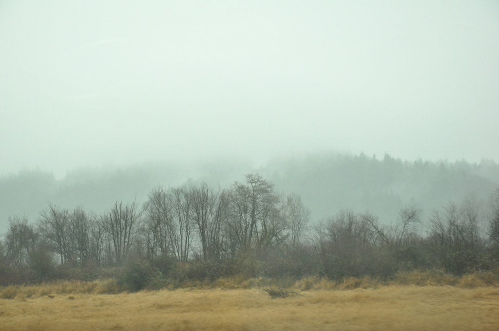 fog on I-5