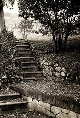 DSC_0477 (Sonia Garbelli) Tags: verona villa girasole villagirasole villeegiardini marcellise