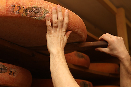lifting wheel of Comté