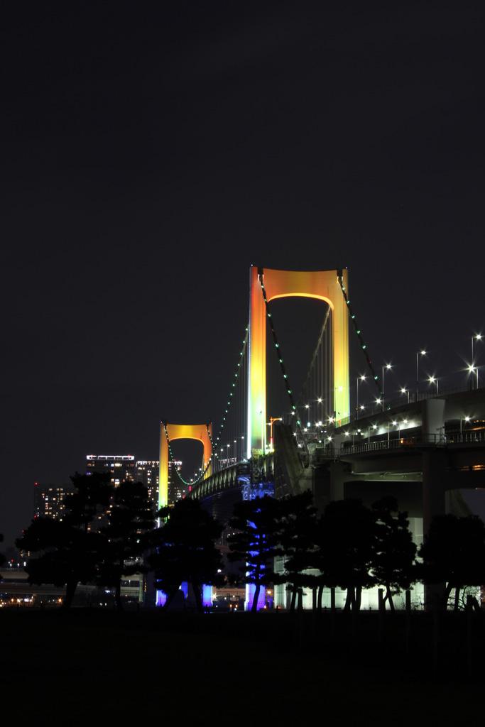 Rainbow bridge illumination 04(TOKYO)
