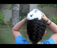 (3    d ) Tags: white cute rabbit bunny girl canon eos maryam  500d maryoom   maryooma   3houd  arnoob ohoud