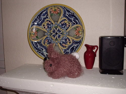 Foo-Foo by the decorative plate on the mantel