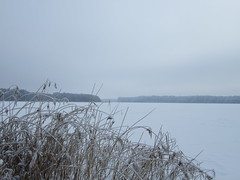 Frozen lake (fsteffenhagen) Tags: winter lake snow ice landscape frozen uckermark 2010 templin lbbesee