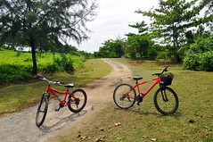 Ketam Mountain Bike Park at Pulau Ubin