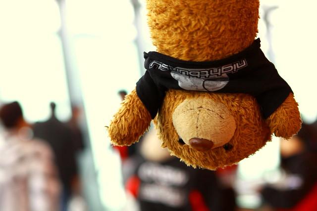 bungee bear