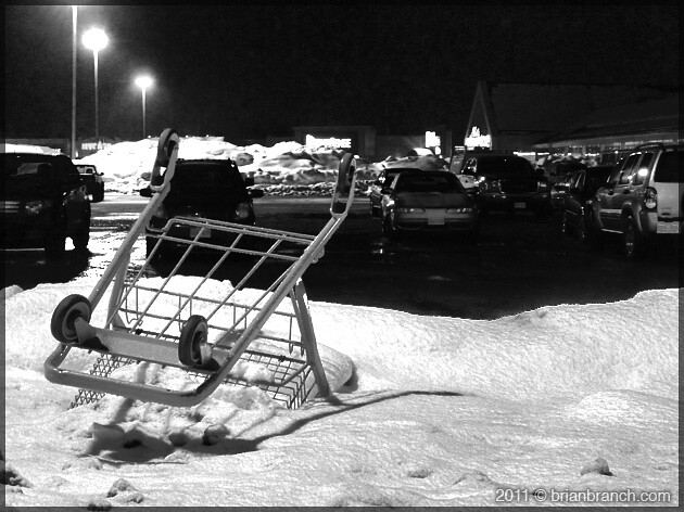 P1130507_shopping_cart