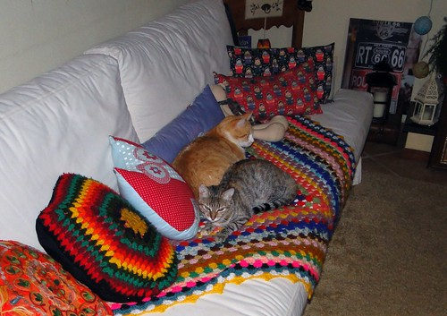 Dividindo o sofá