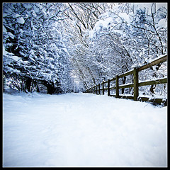 One more time down the tunnel, HFF! (Another added in comments) (Ianmoran1970) Tags: snow explore crosby hff explored ianmoran ianmoran1970 ihadhadenoughofwinterwhitesforawhilebutleftmyshotathome
