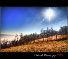 Landscape in Novello - Langhe - HDR - Italy (Margall photography) Tags: italy sun mist fog canon photography italia wine sigma marco rays cuneo 18200 hdr langhe 30d galletto margall novello