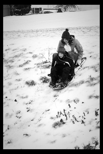 anna noah bw sled2