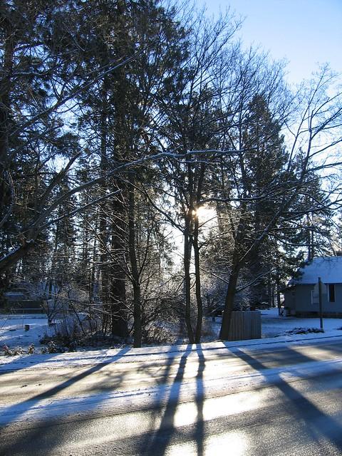 Happy January morning