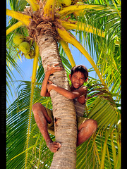 THE PHILIPPINES (BoazImages) Tags: world ocean travel boy sea vacation holiday seascape tree smile weather children landscape fishing asia paradise coconut philippines happiness tropical destination southeast coconuts locations the destinations ofthe  supershot boazimages lpvertical