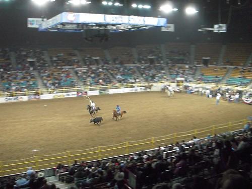 Team calf roping!