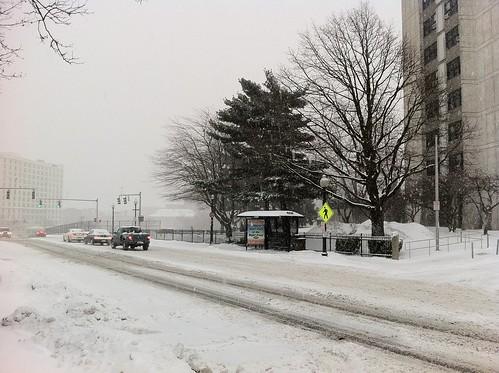 January 21, 2011 Snow