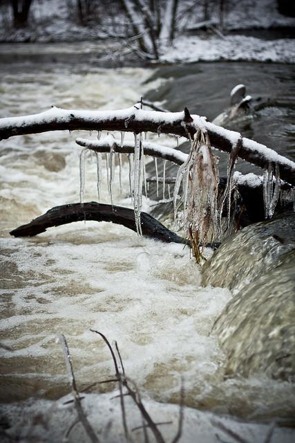 Rzeka Rawka zimą