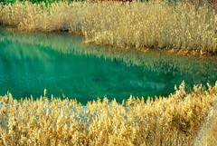 Contrasti in Cava (L▲iv ©) Tags: red italy water italia blu ivan bauxite di acqua otranto rosso salento puglia cava lecce apulia lazzari 2011 laivphoto
