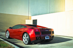 Lamborghini Gallardo (texan photography) Tags: italia texas houston ferrari enzo gto bugatti lamborghini scuderia gallardo f430 veyron 430 supersports 599 458 lp640 worldcars lightroom3 lp560 lp670sv lp570sl