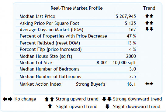 Altos Real-Time Market Profile 97007