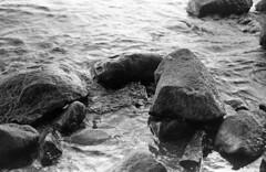 Lake (Nils Kristofer Gustafsson) Tags: blackandwhite bnw ishootfilm retro rollei 400s lomo lomography sweden rebro keepfilmalive filmisnotdead filmphotography film rodina adonal