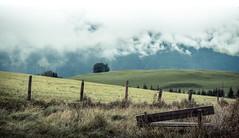 view (blaendwaerk) Tags: mountain canon eos 650d 1750mm austria sterreich berg alpen alps wolken clouds forest wald baum tree himmel sky snow schnee gipfel peak high tauern landschaft outdoor bergspitze hgel abhang fog nebel