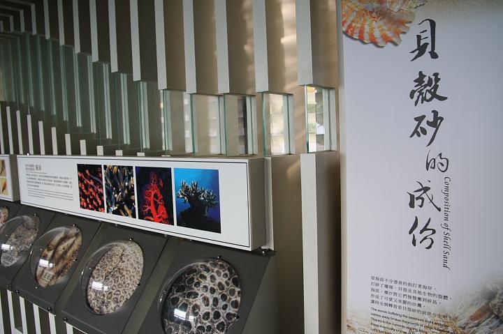 砂島貝殼砂展示館009