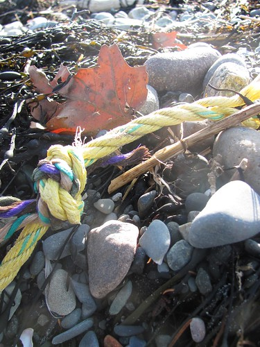 Rope and Seaweed