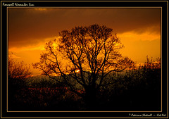 Farewell November Sun (Cat-Art) Tags: catart~catrionashatwell catrionashatwell~northernireland catart~northernireland catrionashatwell~catart~ireland wwwdoublevisionimageswebscom