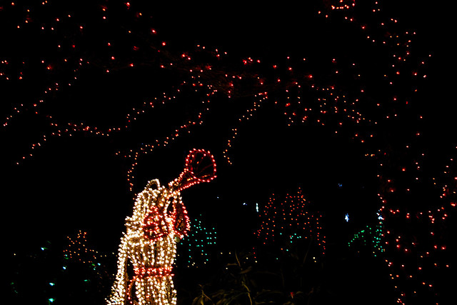 Bellingrath Gardens Christmas lights 5