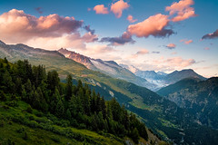 Switzerland - Belalp: Mountain Retreat (John & Tina Reid) Tags: switzerland dom valais swissalps belalp travelphotography jonreid fletschhorn sparrhorn nesthorn tinareid hohstock wwwnomadicvisioncom alpsinsummer