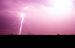 flash (Timm Ziegenthaler) Tags: purple flash blitz gewitter thunder donner