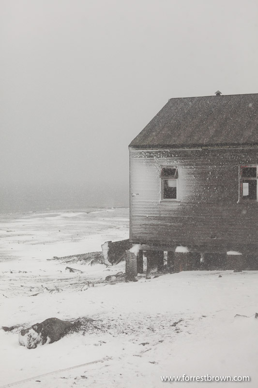 Abandoned Building, Deception Island, Antarctica
