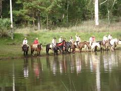 Bebedouro (Angela_Cristina) Tags: life people horse sol colors animals pessoas gente vida campo amizade animais cavalo bicho tropa ferias fazenda rodeio povo galope santaritacavalgada