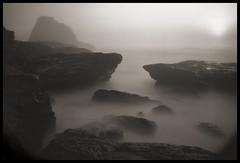 the sea primordial (stormiticus) Tags: ocean sea blackandwhite bw seascape film water analog shore largeformat californiacoast 5x7 pantherbeach largeformatmeetupgroup
