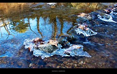Ice Formations     148/365 (EspressoTime) Tags: borderfx cold stream brook ice iceformation downstream reflection afternoon 365 project365 art photo photography photograph nathanharrison espressotime canon image light silent poetry