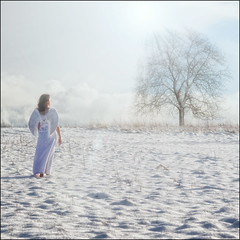 Heaven can wait ... (timo.frey) Tags: schnee winter portrait sun snow tree angel heaven himmel portrt canon5d engel sonne baum winterlandschaft ef70200mm lichtstrahlen strahlen timofrey